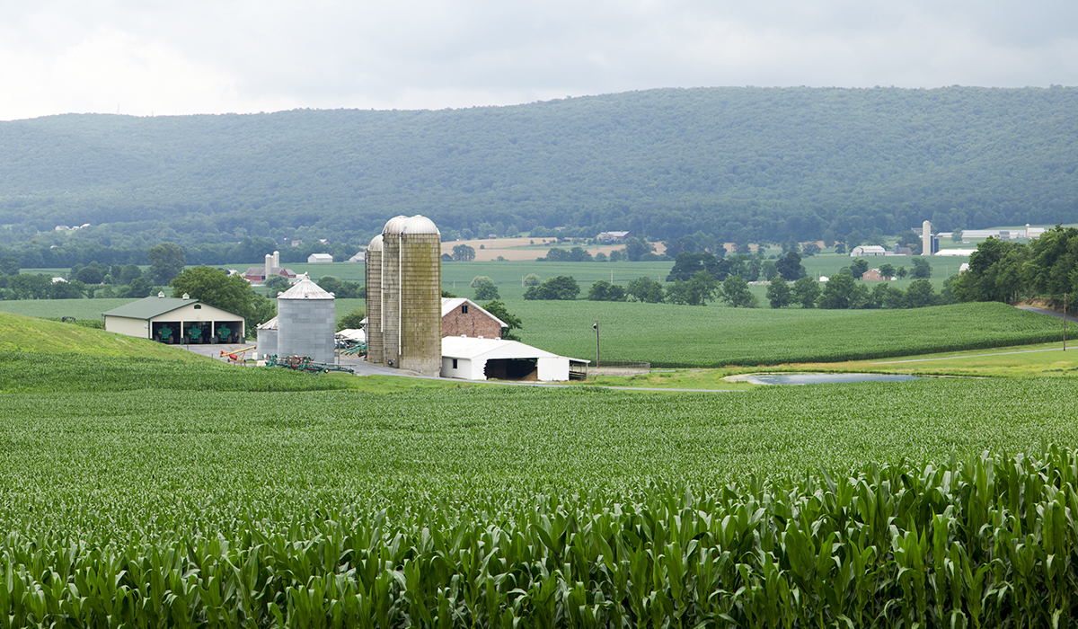 commercial farm insurance with BSMW